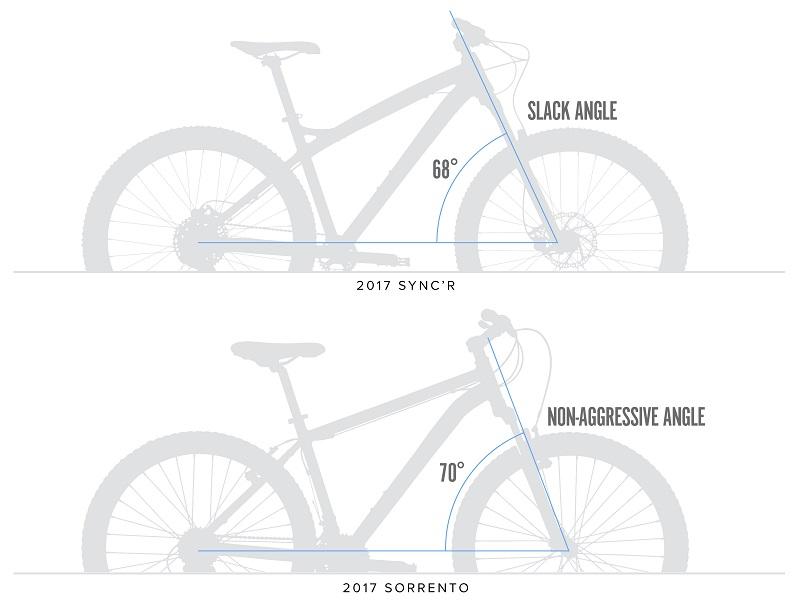 Head Angle Comparison