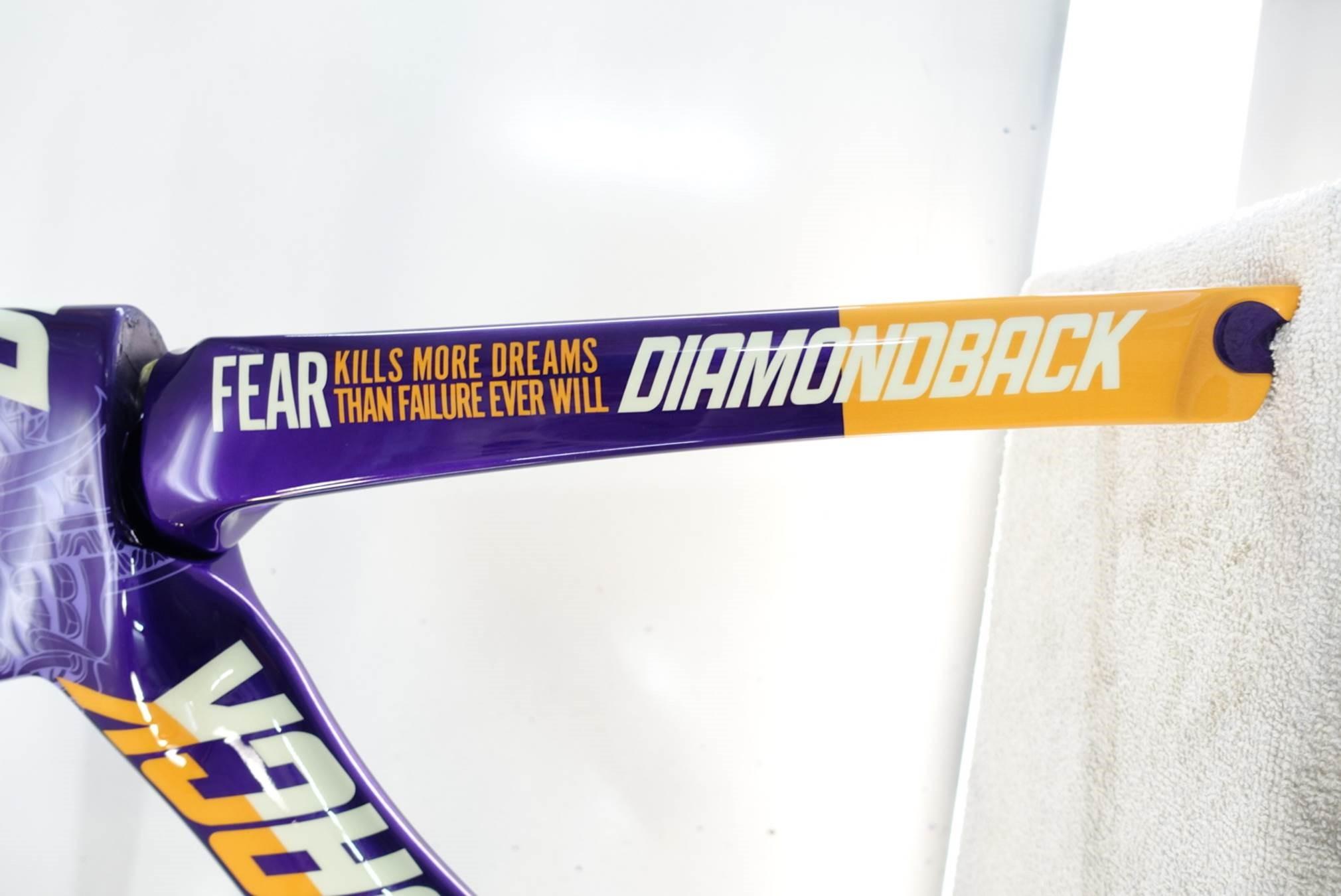 rachel mcbride's purple demon serios bike