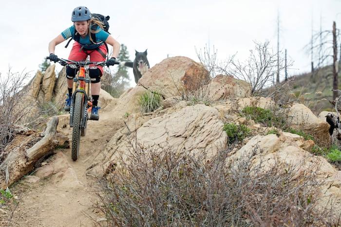 Rider with dog